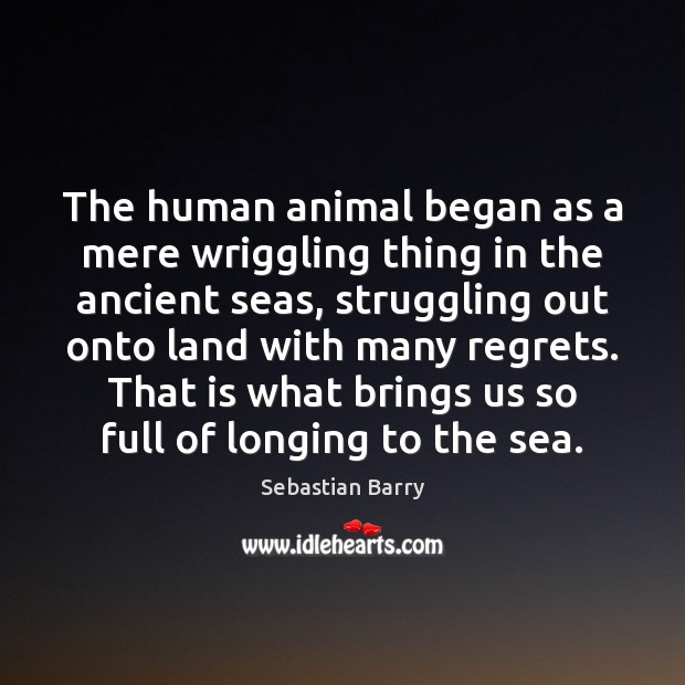 The human animal began as a mere wriggling thing in the ancient Sebastian Barry Picture Quote