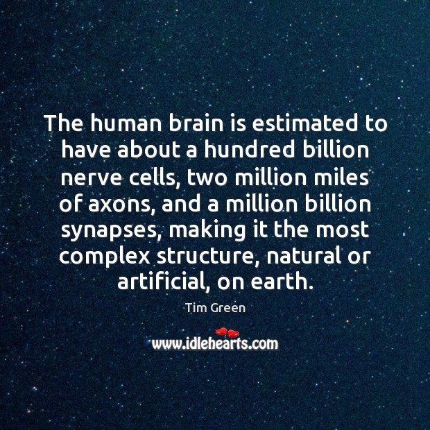 Image, The human brain is estimated to have about a hundred billion nerve