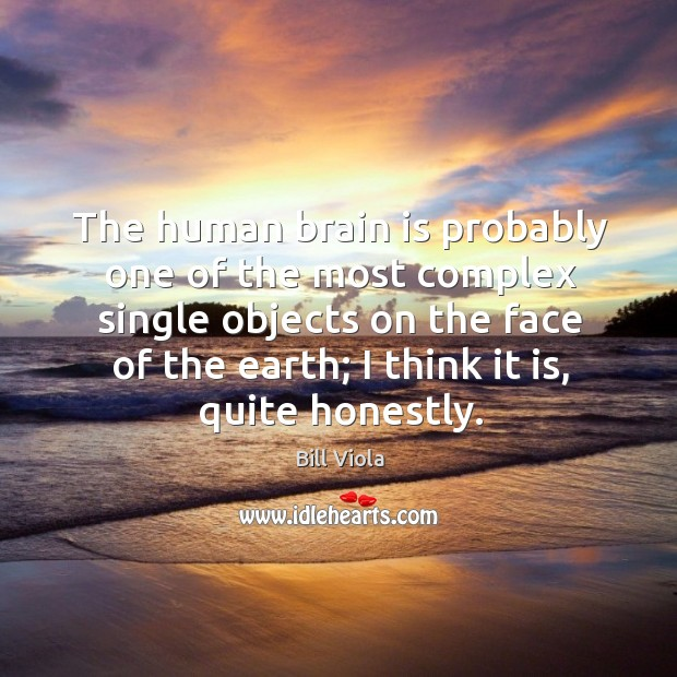 The human brain is probably one of the most complex single objects Image