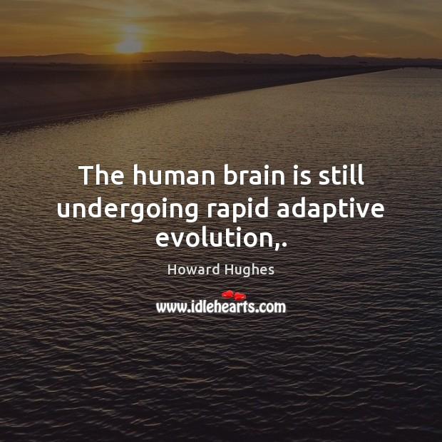 Image, The human brain is still undergoing rapid adaptive evolution,.
