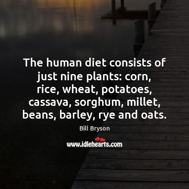 Image, The human diet consists of just nine plants: corn, rice, wheat, potatoes,