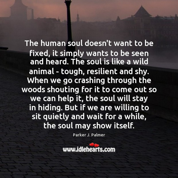The human soul doesn't want to be fixed, it simply wants to Image