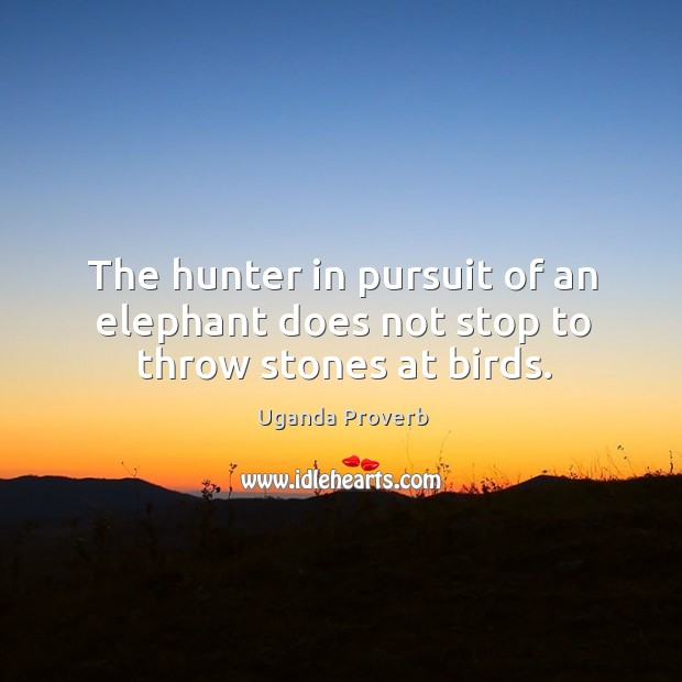 The hunter in pursuit of an elephant does not stop to throw stones at birds. Uganda Proverbs Image