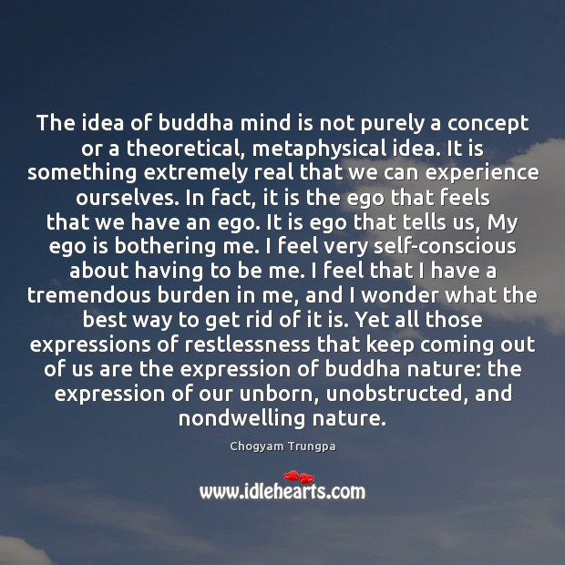The idea of buddha mind is not purely a concept or a Image