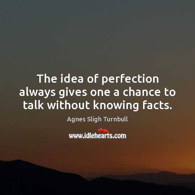 Image, The idea of perfection always gives one a chance to talk without knowing facts.