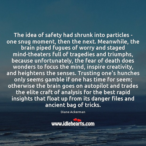 The idea of safety had shrunk into particles – one snug moment, Diane Ackerman Picture Quote