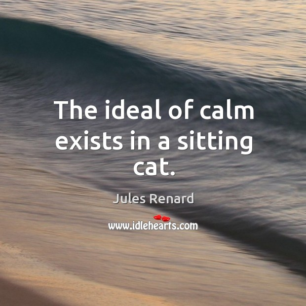 The ideal of calm exists in a sitting cat. Image