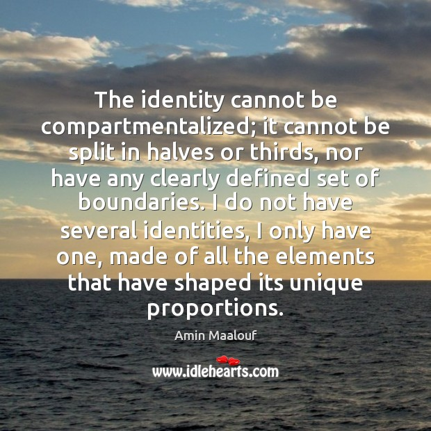 The identity cannot be compartmentalized; it cannot be split in halves or Amin Maalouf Picture Quote