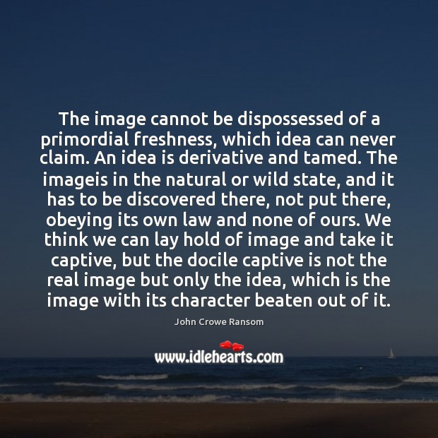 The image cannot be dispossessed of a primordial freshness, which idea can Image