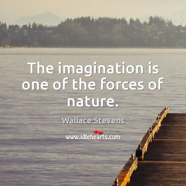 Imagination Quotes Image