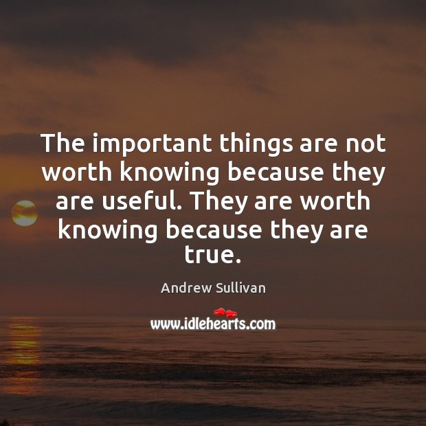 The important things are not worth knowing because they are useful. They Andrew Sullivan Picture Quote