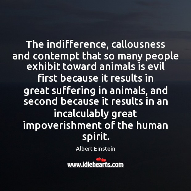The indifference, callousness and contempt that so many people exhibit toward animals Image