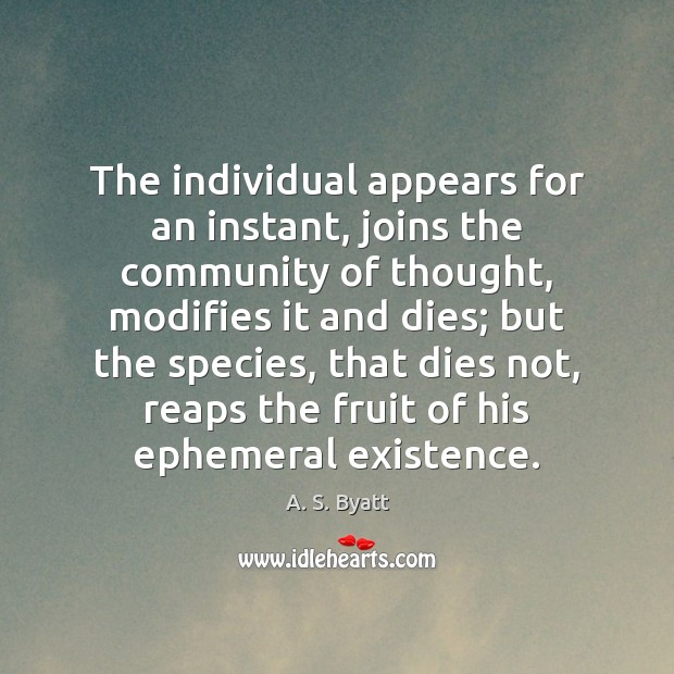 The individual appears for an instant, joins the community of thought, modifies Image