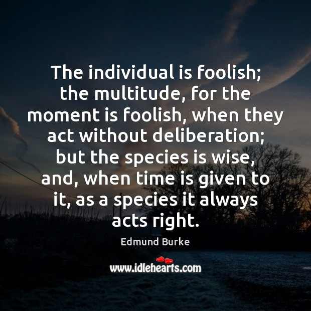 Image, The individual is foolish; the multitude, for the moment is foolish, when