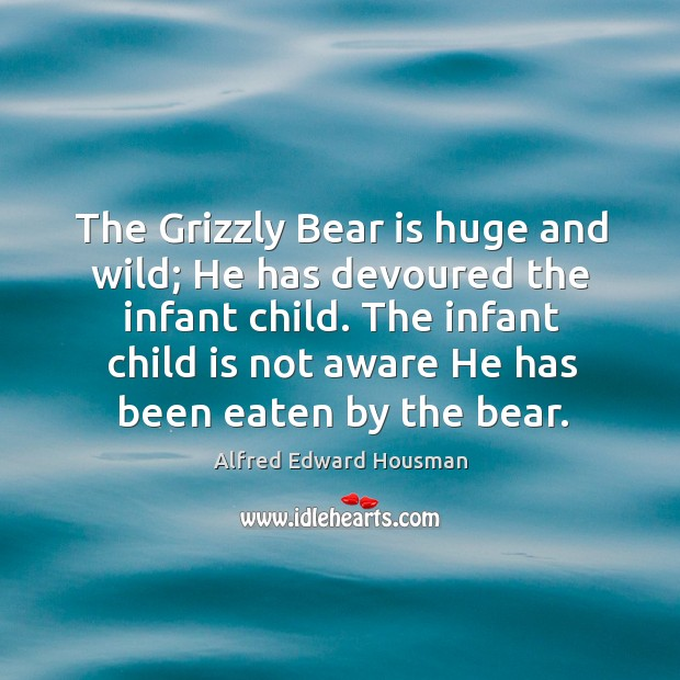 Image, The infant child is not aware he has been eaten by the bear.