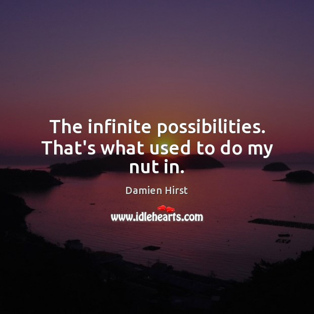 The infinite possibilities. That's what used to do my nut in. Damien Hirst Picture Quote