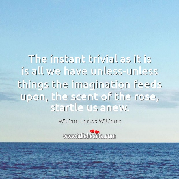The instant trivial as it is is all we have unless-unless things William Carlos Williams Picture Quote