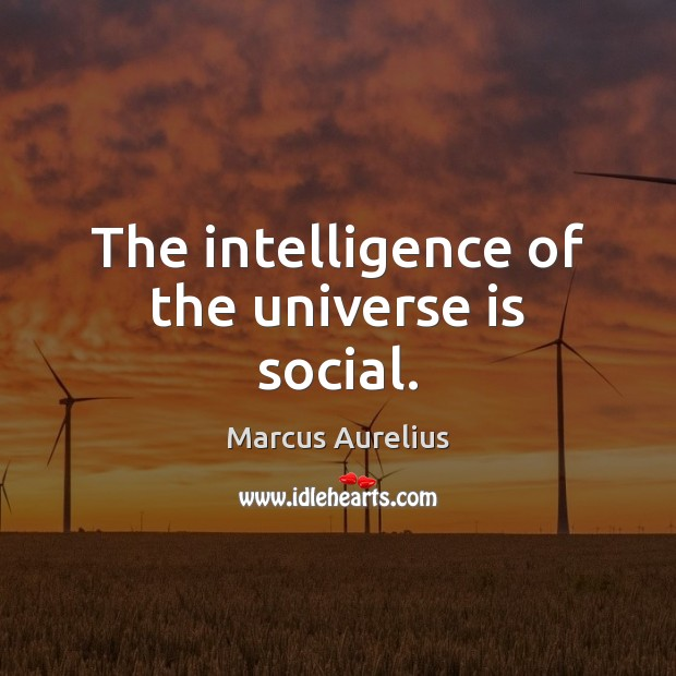 The intelligence of the universe is social. Image