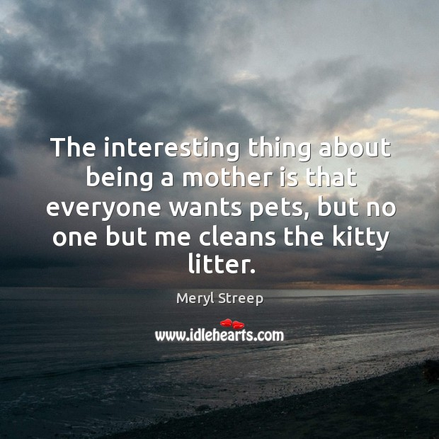 The interesting thing about being a mother is that everyone wants pets, but no one but me cleans the kitty litter. Image