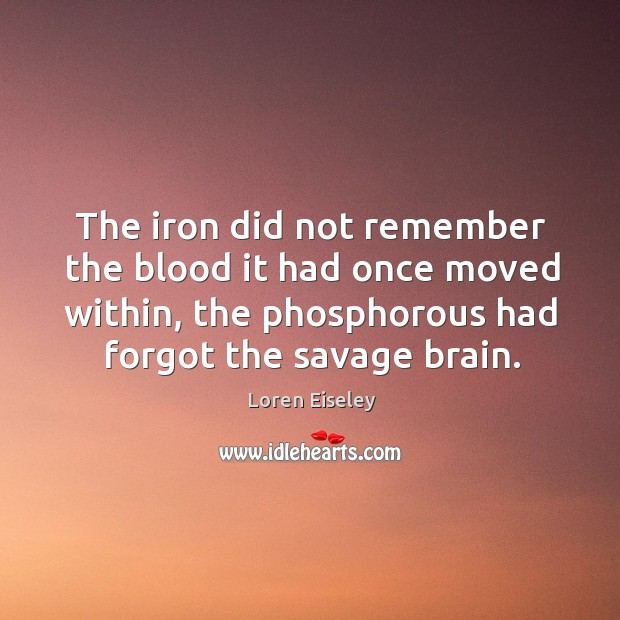 The iron did not remember the blood it had once moved within, Loren Eiseley Picture Quote