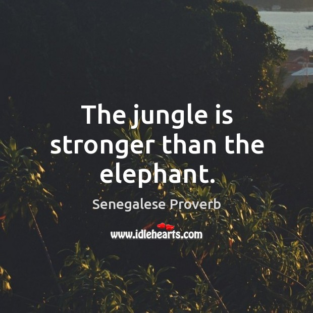 The jungle is stronger than the elephant. Senegalese Proverbs Image