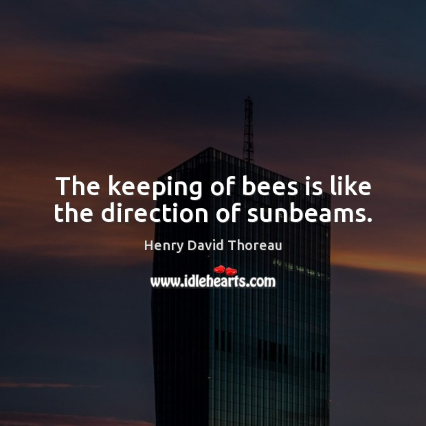 Image, The keeping of bees is like the direction of sunbeams.