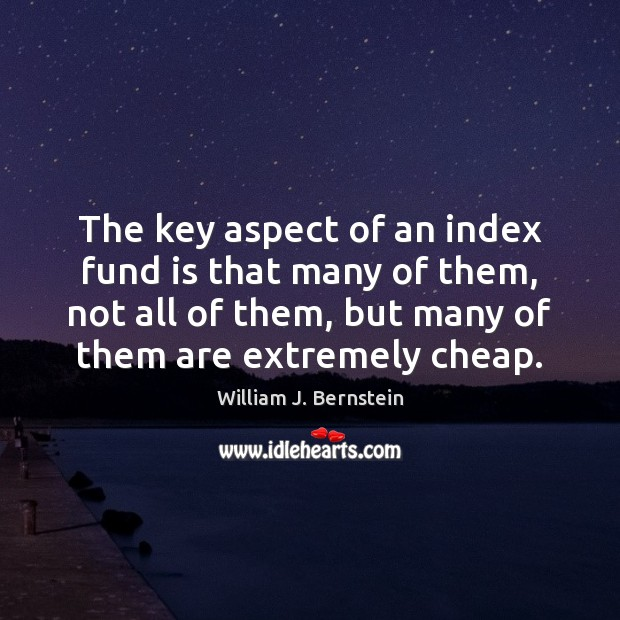 Image, The key aspect of an index fund is that many of them,