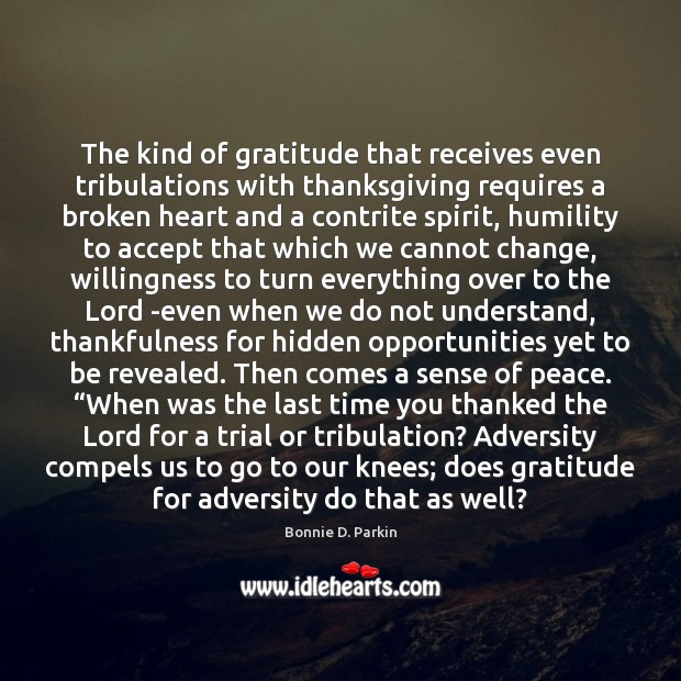 Image, The kind of gratitude that receives even tribulations with thanksgiving requires a