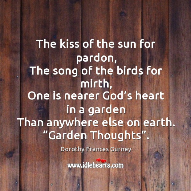 The kiss of the sun for pardon Image