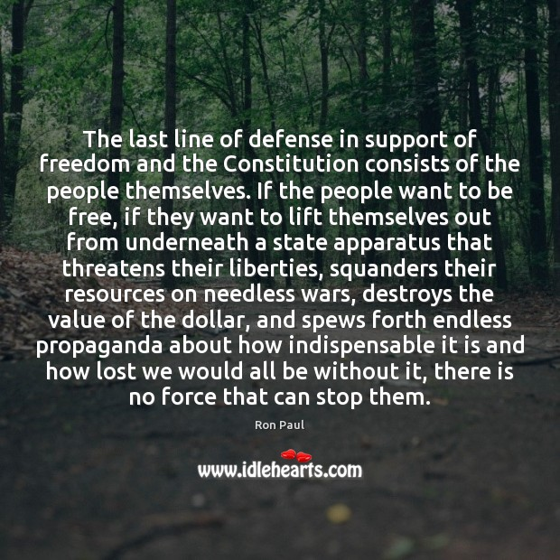The last line of defense in support of freedom and the Constitution Image