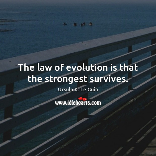 The law of evolution is that the strongest survives. Image