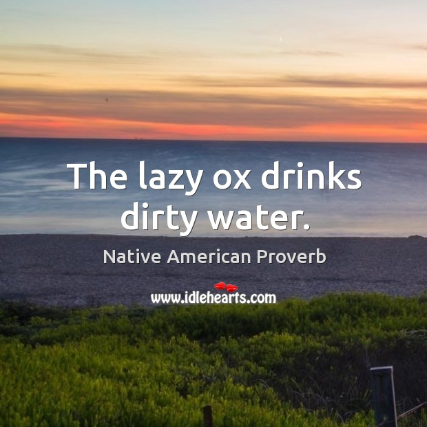 The lazy ox drinks dirty water. Native American Proverbs Image