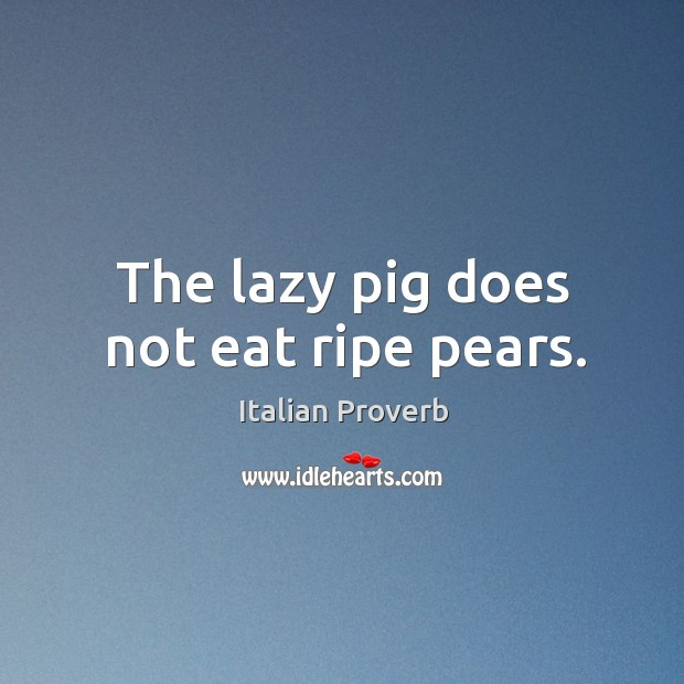 Image, The lazy pig does not eat ripe pears.