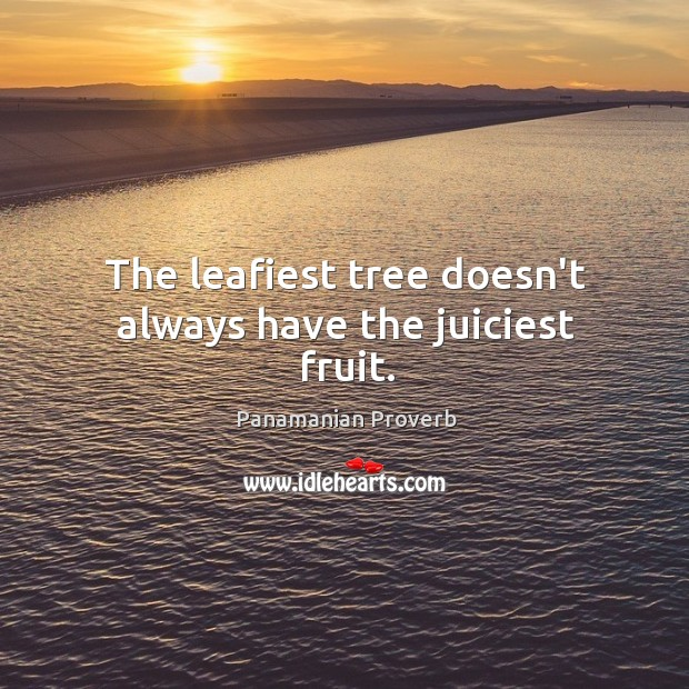 The leafiest tree doesn't always have the juiciest fruit. Panamanian Proverbs Image
