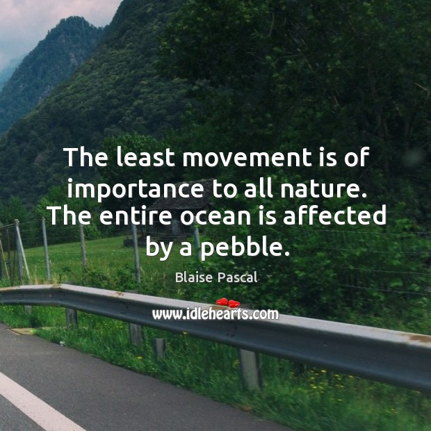 The least movement is of importance to all nature. The entire ocean is affected by a pebble. Image
