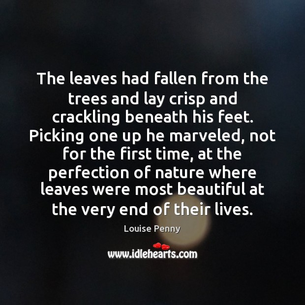 The leaves had fallen from the trees and lay crisp and crackling Image