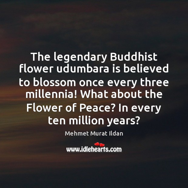 Image, The legendary Buddhist flower udumbara is believed to blossom once every three