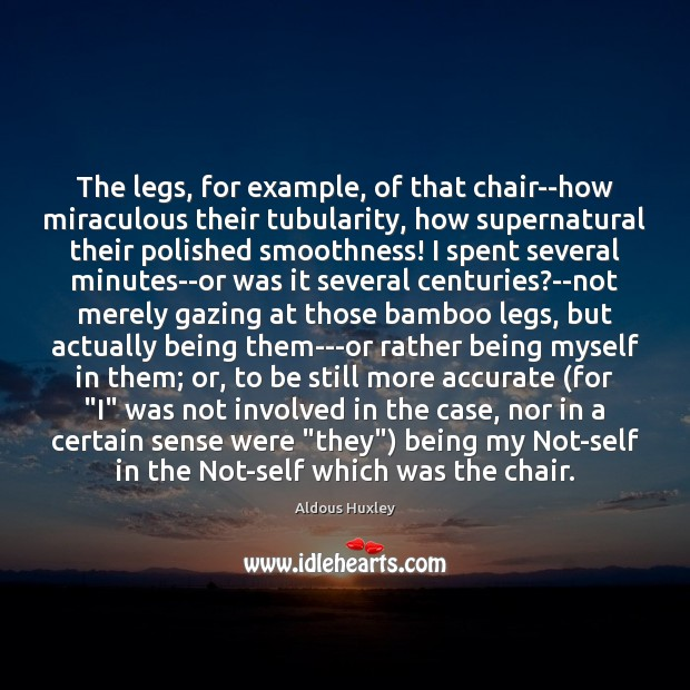 Image, The legs, for example, of that chair–how miraculous their tubularity, how supernatural