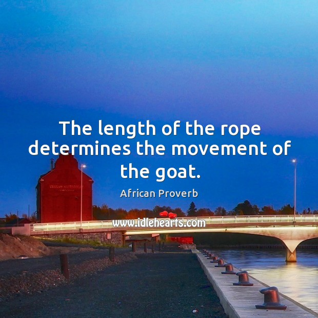 Image, The length of the rope determines the movement of the goat.