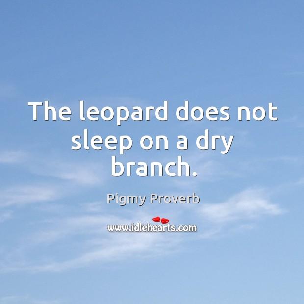 Pigmy Proverbs