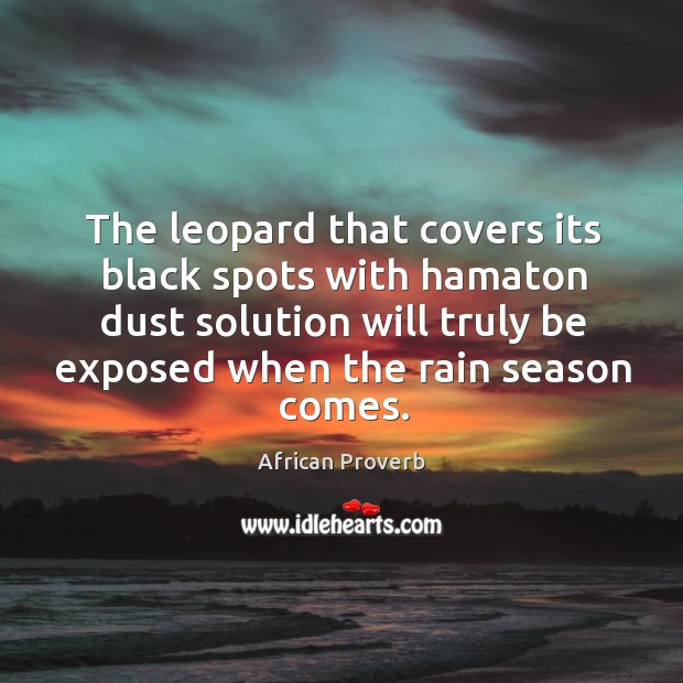 Image, The leopard that covers its black spots with hamaton dust solution will truly be exposed when the rain season comes.