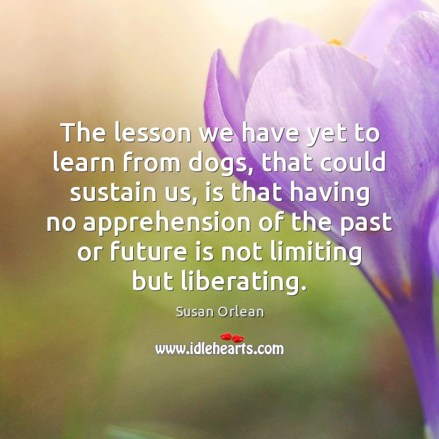 The lesson we have yet to learn from dogs, that could sustain Susan Orlean Picture Quote