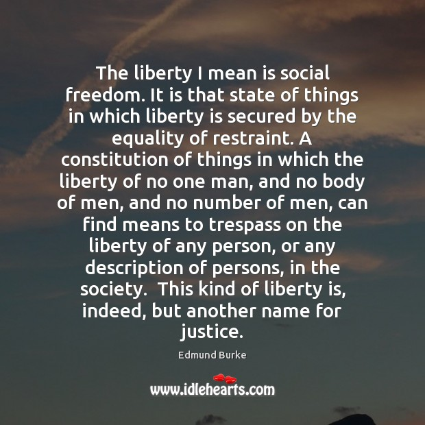 Image, The liberty I mean is social freedom. It is that state of
