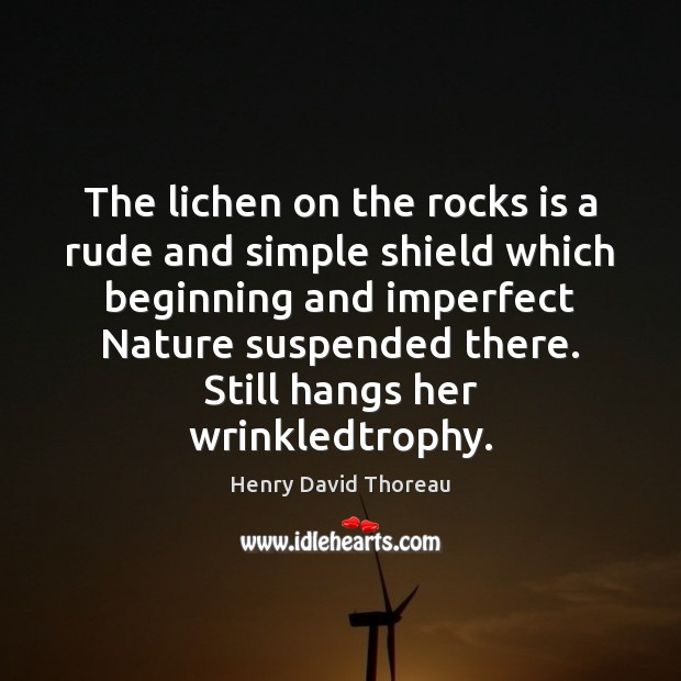 Image, The lichen on the rocks is a rude and simple shield which