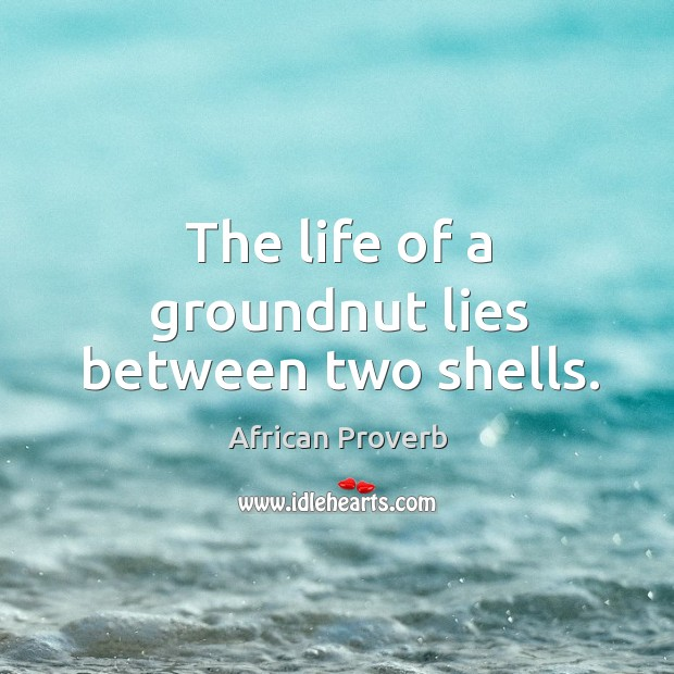 Image, The life of a groundnut lies between two shells.