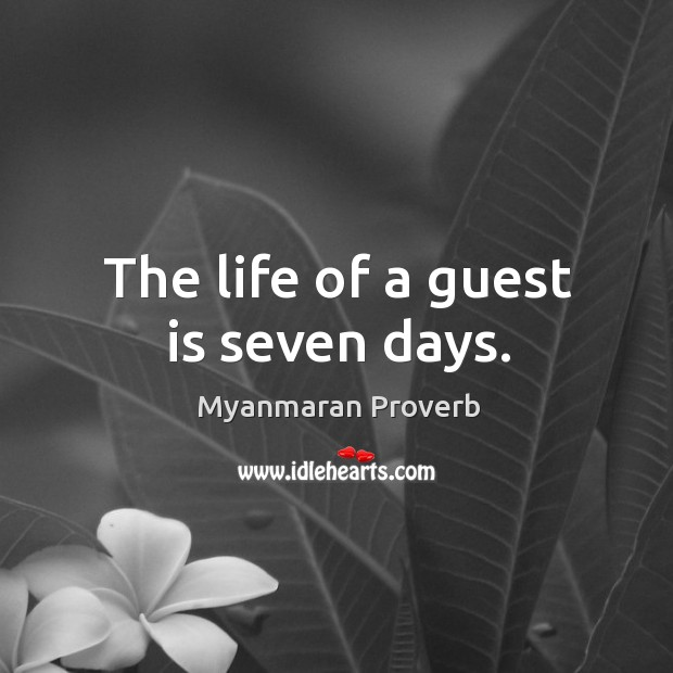 The life of a guest is seven days. Myanmaran Proverbs Image