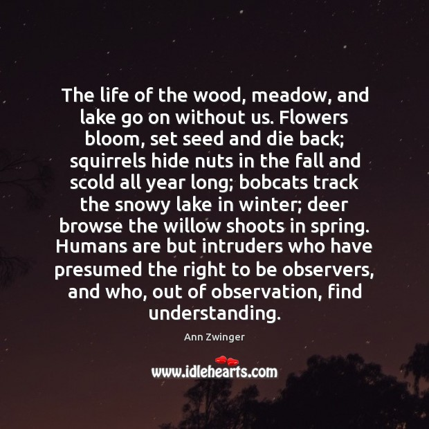 The life of the wood, meadow, and lake go on without us. Winter Quotes Image