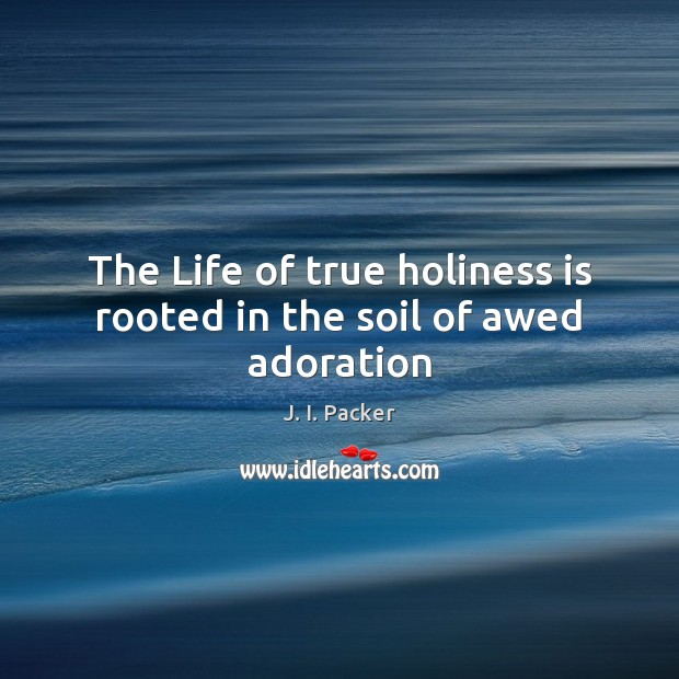 The Life of true holiness is rooted in the soil of awed adoration Image