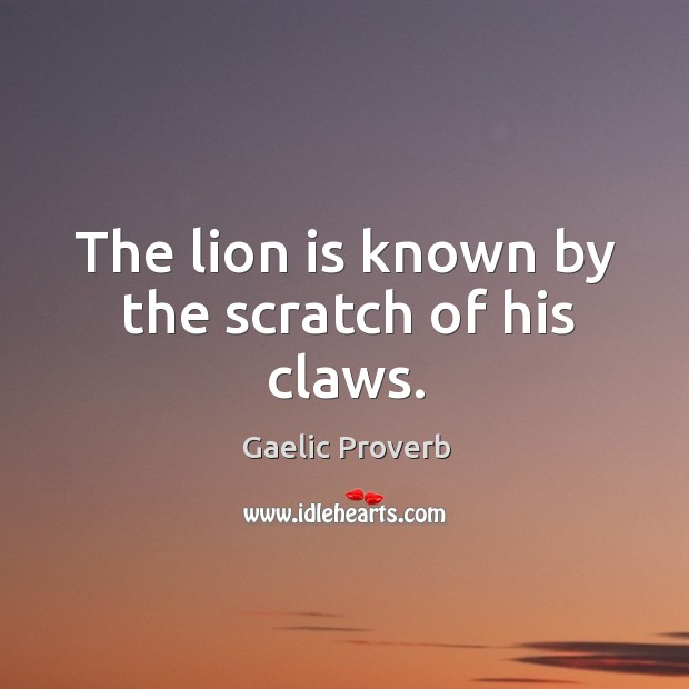 The lion is known by the scratch of his claws. Gaelic Proverbs Image