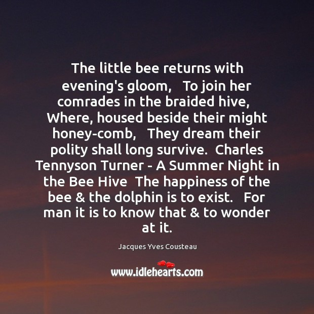 Image, The little bee returns with evening's gloom,   To join her comrades in